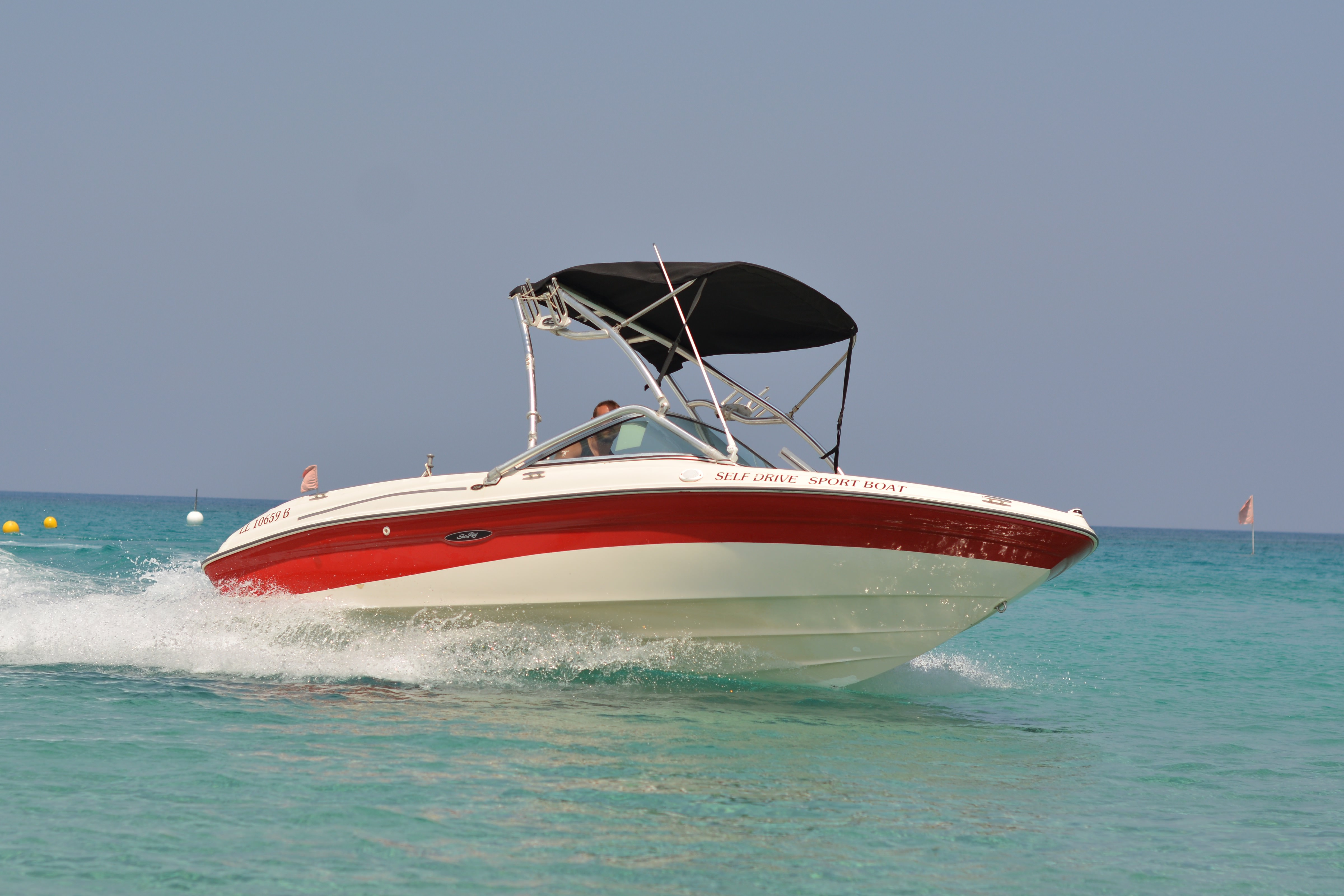 Picture of Sea Ray Sports Boat